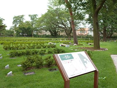 小型芝生埋蔵施