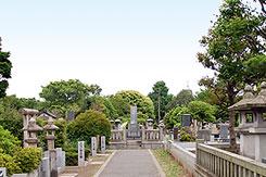都立谷中霊園