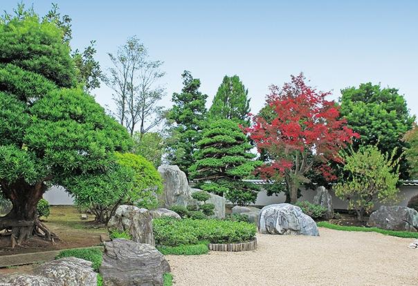 庭園寸景2