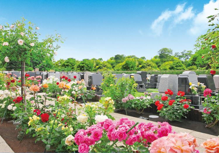 バラに囲まれた墓域2