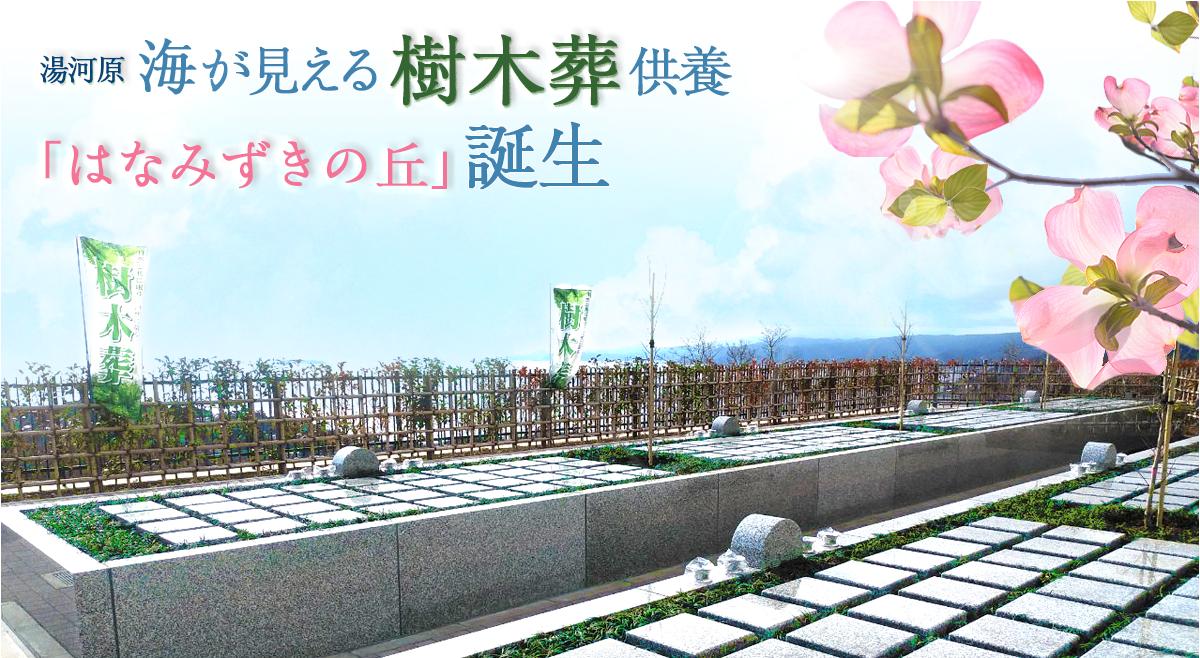 空と海 新・吉祥公園墓地 樹木葬供養誕生